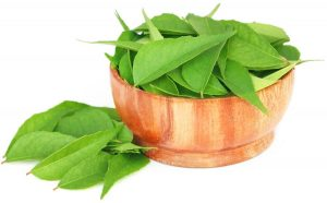 Natural Therapy from curry leaf is therapeutic 2