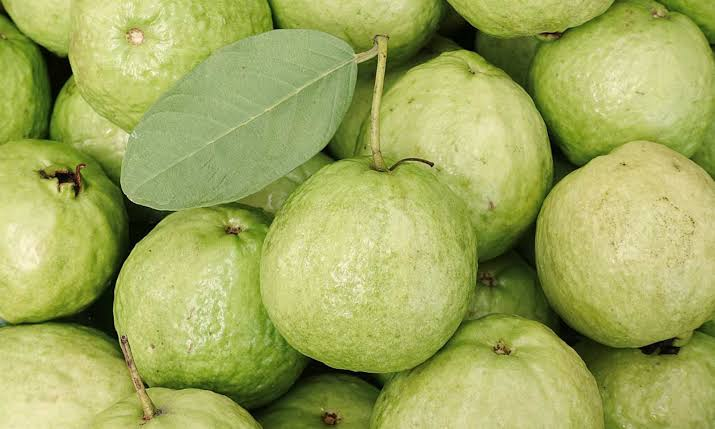 Guava: side effects from health
