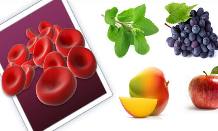 Blood Cells: Increase in Very Fast Remedies