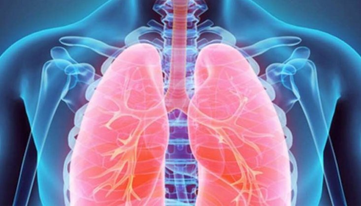Lungs: problems to check this ayurvedic Remedie