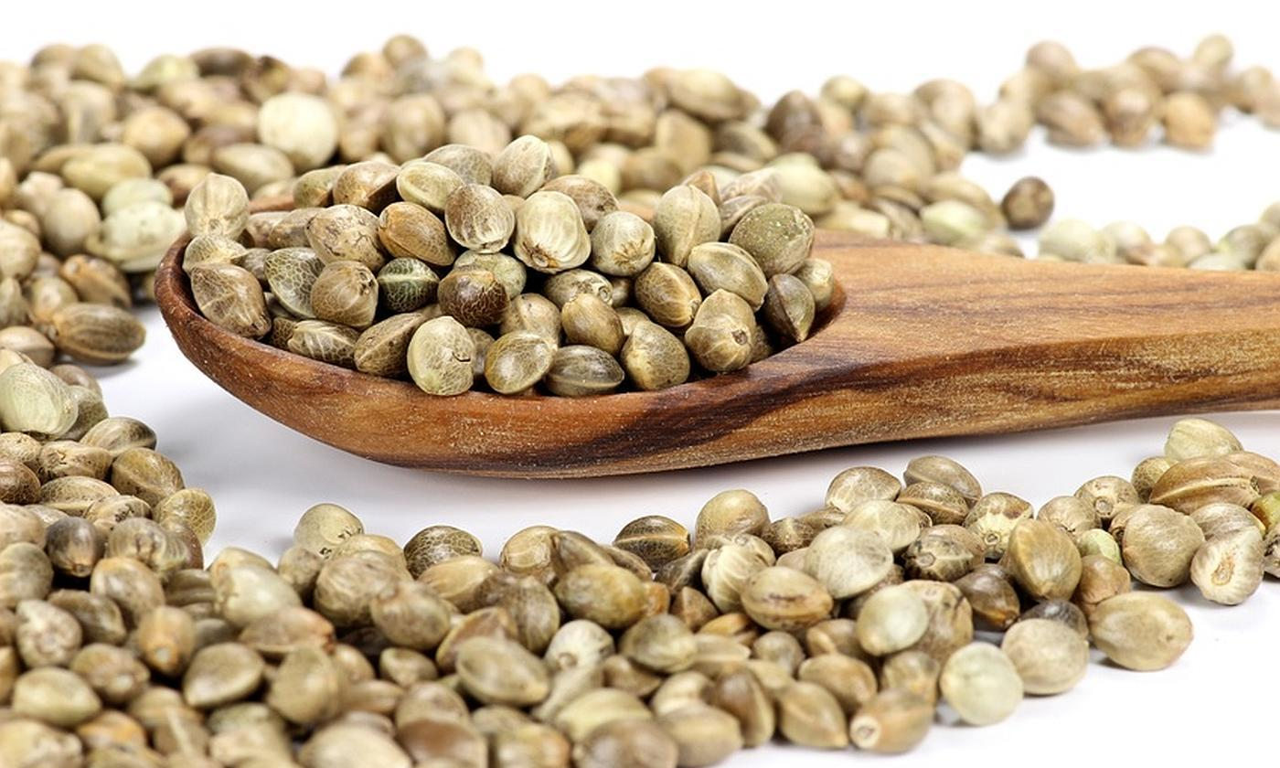 Hemp Seeds: To Check Some of health problems