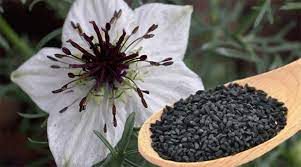 Excellent Health Benefits of Kalonji: seeds And Oil